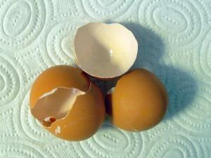 cáscaras de huevo para adsorber contaminantes