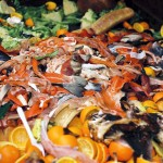Ainia investiga el uso de residuos agroalimentarios para producir hidrógeno y biogás en la misma instalación