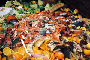 residuos de la industria agroalimentaria