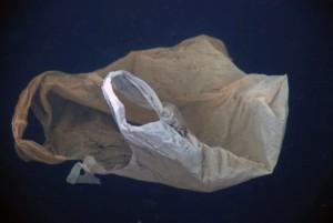 bolsa de plástico abandonada en medio acuático
