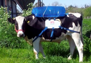almacenamiento del biogás en la mochila