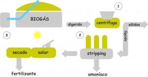 Esquema simplificado del tratamiento de digerido de Enerbiom, en el marco del proyecto DIGESMART