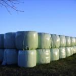 La Xunta de Galicia recogió más de 3.000 toneladas de residuos plásticos agrícolas en 2013