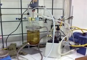 Transforman el glicerol en polímeros de alto valor añadido