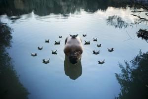 Tercera imagen clasificada en el concurso de fotografía Upcycling