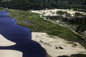 Toda la legislación sobre temas ambientales de Uruguay, disponible en la web