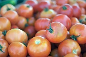 Investigan el uso de residuos de tomate en la fabricación de vehículos