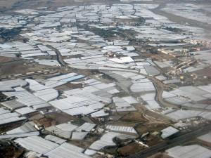 España es el país europeo con mayor superficie dedicada a invernaderos, por lo que su aprovechamiento para obtener estos ecocompuestos es de gran interés
