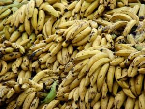 Obtienen cemento con propiedades mejoradas a partir de residuos de plátano