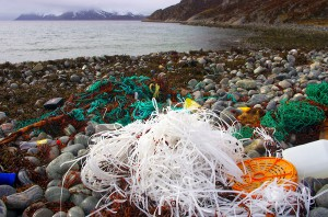 Concluye el proyecto MARLISCO con propuestas contra la basura marina