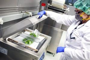 Envases innovadores ayudan a reducir el desperdicio de alimentos