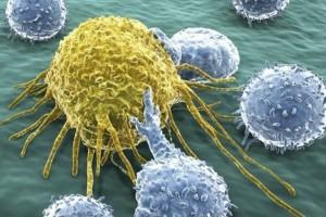 La investigación ha concluido que el plaguicida lindano es carcinógeno