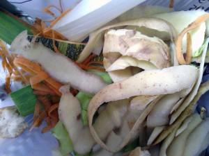 residuos de alimentos
