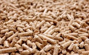 Brisk ha puesto a disposición de los investigadores europeos una red trasnacional de infraestructuras científicas en el campo de la biomasa