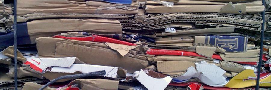 El reciclaje de papel en España confirma su crecimiento con más de 4,5 millones de toneladas recuperadas