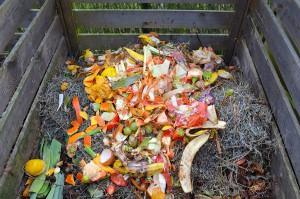 Aprovechar los residuos como fertilizantes permitiría sustituir el 30% de los abonos que se importan en la UE