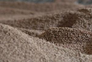 Biomasa de hueso de aceituna