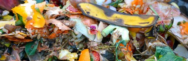 El compost de biorresiduos