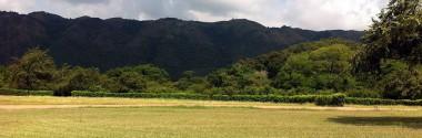 La falta de autorización de uso excepcional de suelo rústico para una planta de tratamiento de residuos industriales no anula la Autorización Ambiental