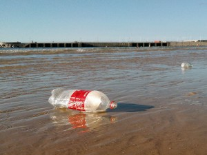 Los residuos plásticos han pasado a formar parte del ecosistema marino del Mediterráneo