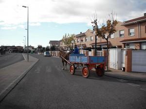 Carro de caballos para recoger los residuos orgánicos de Chimillas (Huesca)
