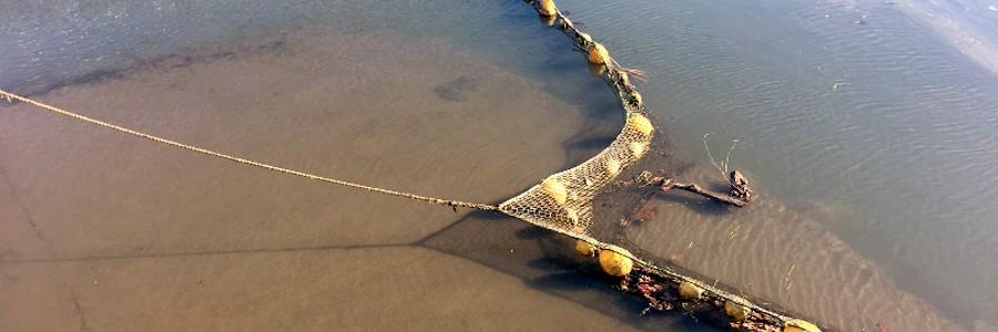 Proyecto LIFE LEMA contra las basuras marinas en el Golfo de Bizkaia