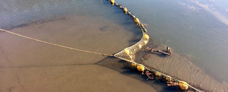 El proyecto LIFE LEMA pretende hacer frente a las basuras marinas del golfo de Bizkaia