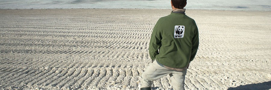 El Tribunal Supremo confirma la fianza de 65 millones de euros a Fertiberia para limpiar los fosfoyesos de la marisma de Huelva