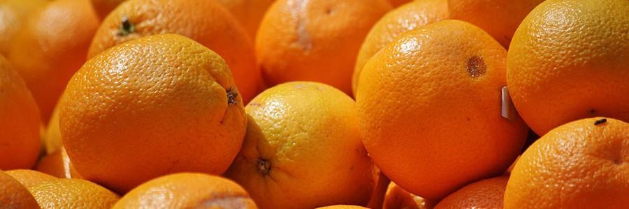 Chile: lanzan una aplicación para reducir el desperdicio alimentario