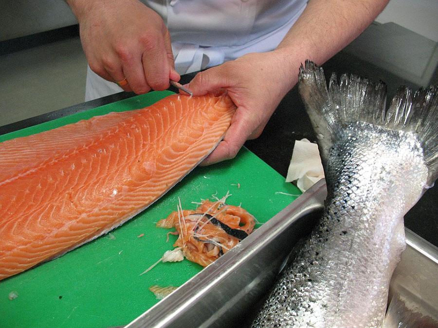 El proyecto DAFIA valorizará residuos urbanos y de la industria pesquera