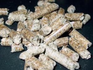 pellet procedente de biomasa forestal