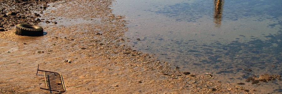 La creciente amenaza de la basura marina