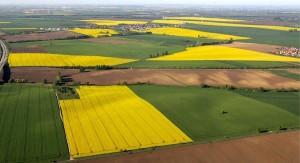 Europa apuesta por los biocarburantes de segunda generación