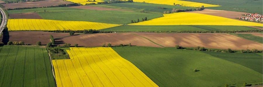 Europa mejora su apuesta por los biocarburantes de segunda generación