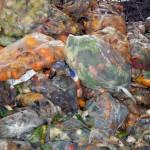 Crean una biorrefinería para valorizar residuos orgánicos de un mercado de abastos