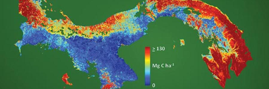 Panamá elabora el mapa nacional de carbono con mayor resolución del mundo