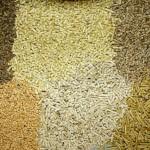 Concedidos los dos primeros sellos de calidad de biomasa del proyecto Biomasud