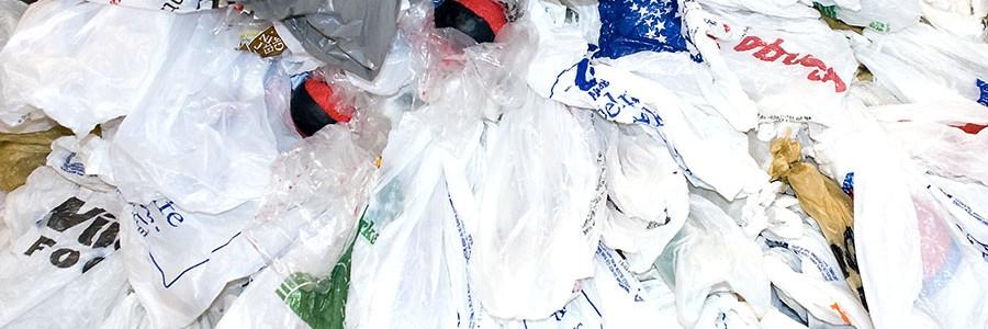 ECOFLEXOBAG: buscando alternativas sostenibles a las bolsas comerciales de plástico