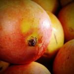 La cáscara del mango, un residuo de gran potencial para la agroindustria