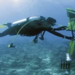 Expertos de 16 países ponen en común su conocimiento sobre biodiversidad y estado ambiental de los mares comunitarios