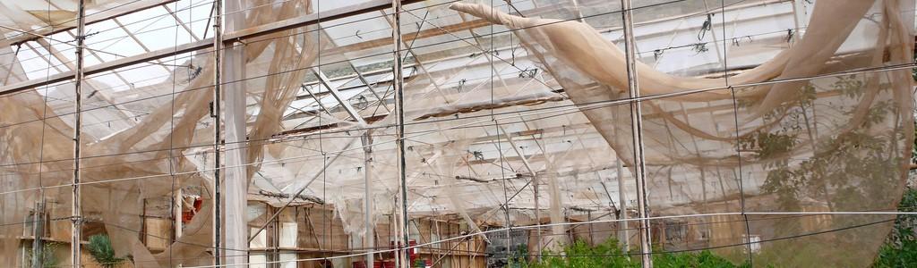 Los agricultores de Motril podrán reciclar sus residuos plásticos gratuitamente a través de la empresa Ibeplast