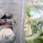 Nuevos envases biodegradables que alargan la vida de los alimentos gracias a moléculas de ajo