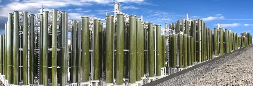 AIMPLAS y Biofuel Systems lideran un proyecto para fabricar plástico a partir de algas cultivadas con CO2 industrial