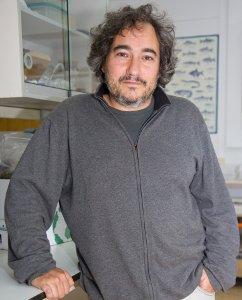 Jon Molinero