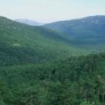 El Congreso de los Diputados da luz verde a la Ley de Evaluación Ambiental