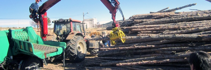 La provincia de Teruel contará con una nueva planta de biomasa