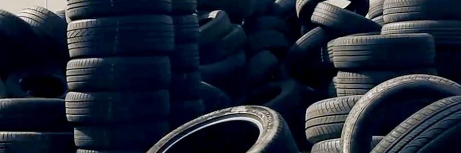 SIGNUS mantendrá la tasa para la gestión de los neumáticos usados un año más