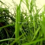 'Recycle', por Sebastian Loghin, premios Waste smArt