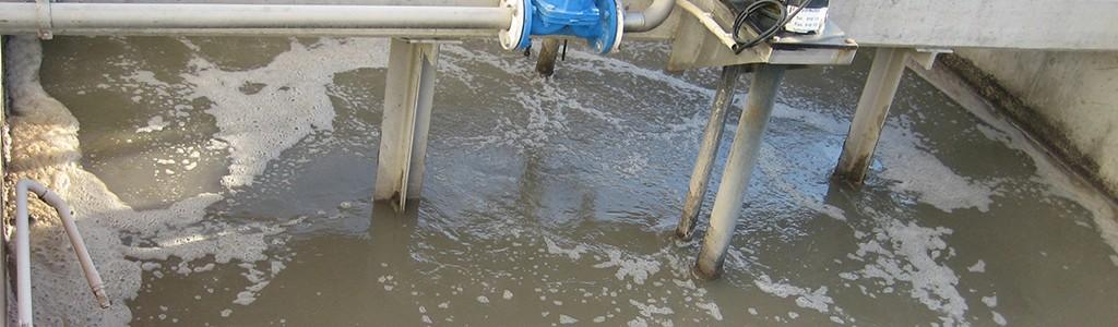 Nuevas biotecnologías para tratar aguas residuales industriales