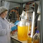 Jornada sobre el aprovechamiento de residuos orgánicos en biorrefinerías